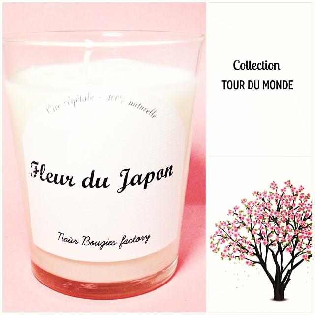 bougie fleur du japon