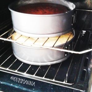 Egg Free Basic Sponge Cake Recipe