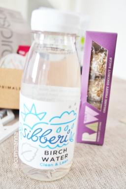 Birch Water Forest Primal Snack Box