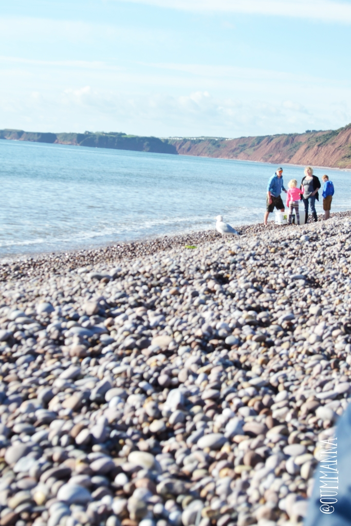 budleigh 5