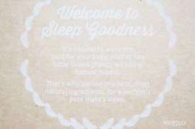 The Little Green Sheep Cot Bed Organic Mattress PROTECTOR