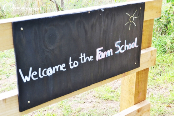 Shillingford Organics Farm School